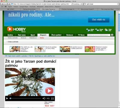 Garry_cook_palm_trees_screengrab